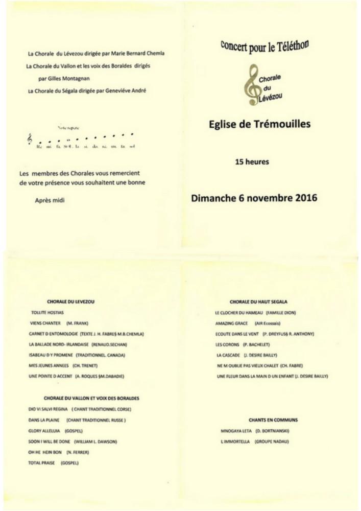 16-11-06-programme-tremouilles